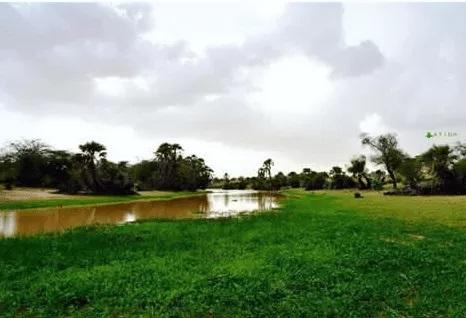 Hauteurs de pluies enregistrées aux Hodhs et au Guidimakha