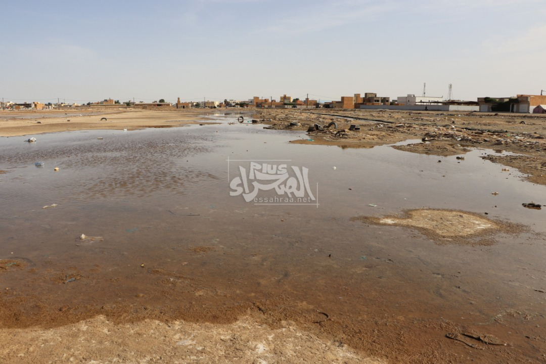 حي الكوفة بمقاطعة السبخة ـ (المصدر: الصحراء)