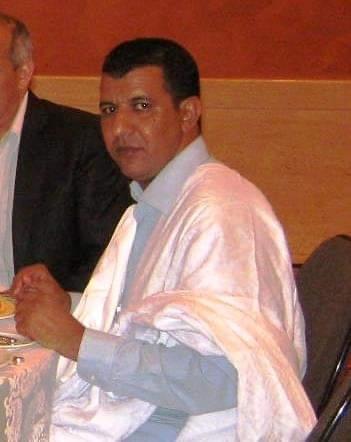 محمد محمود أبو المعالي