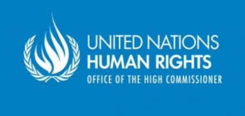 المفوضية السامية لحقوق الإنسان