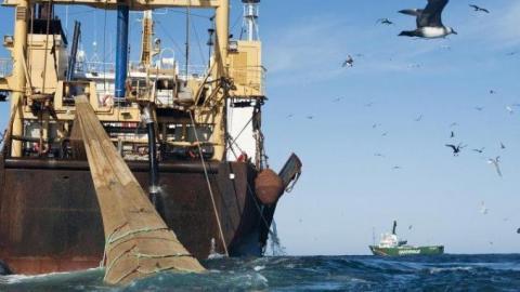 """باخرة صيد في المياه الموريتانية - """"المصدر: الإنترنت"""""""