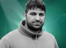 محمد محمود بشار