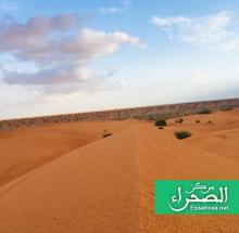 هيئة الأرصاد الجوية توقعت ارتفاع درجات الحرارة مع هبوب رياح ضعيفة - (المصدر:الصحراء)