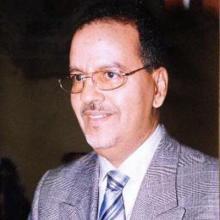 محمد ولد الناني