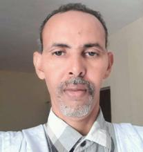 الحسن ولد محمد الشيخ