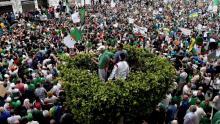 من المظاهرات في الجزائر في مايو 2019