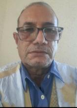 محمد عبد الله ولد بين